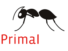 Azure-Backed Primal Delivers Personalized Content via Bing Search APIs