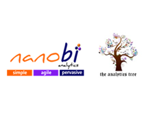 Partner at a Glance: nanobi